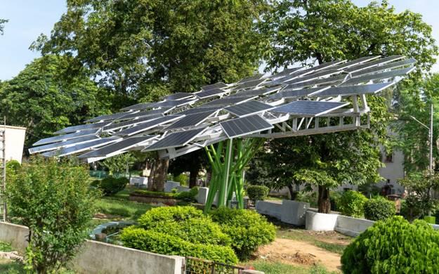 World Largest Solar Tree