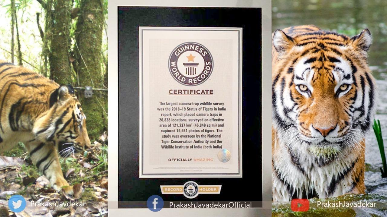 Prakash Javadekar Shared Tiger Census 2018, 2020